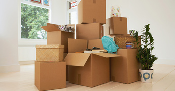 Moving Companies vs DIY: 5 Things You Won't Get